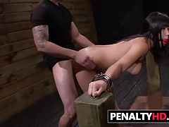 Domination & submission Abasement..