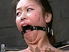 Asian bdsm be fitting of related..