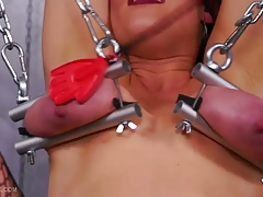 Queensnake.com - Gaping 1