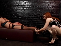 Redhead  trusses stud up and..